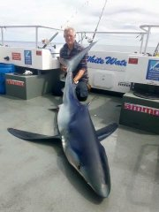 Danny Fitch 242 pound Blue Shark